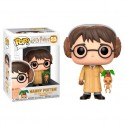 Figura Harry Potter Herbology de Harry Potter Cabezon Pop Funko 10 cm